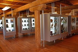 Museo Naturalistico ed Esposizione Faunistica